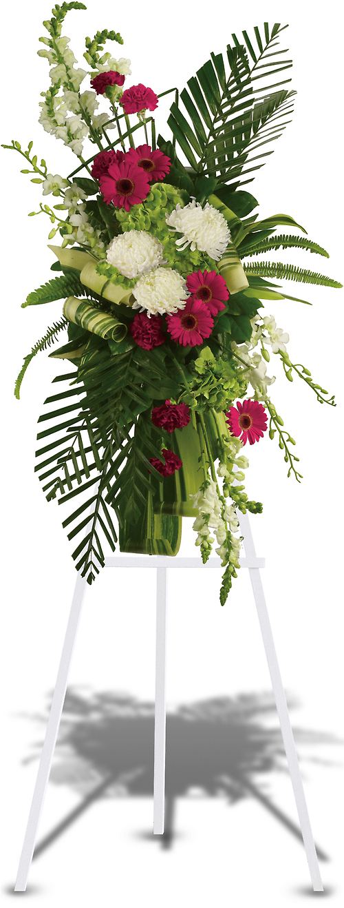 Gerberas and Palms Spray